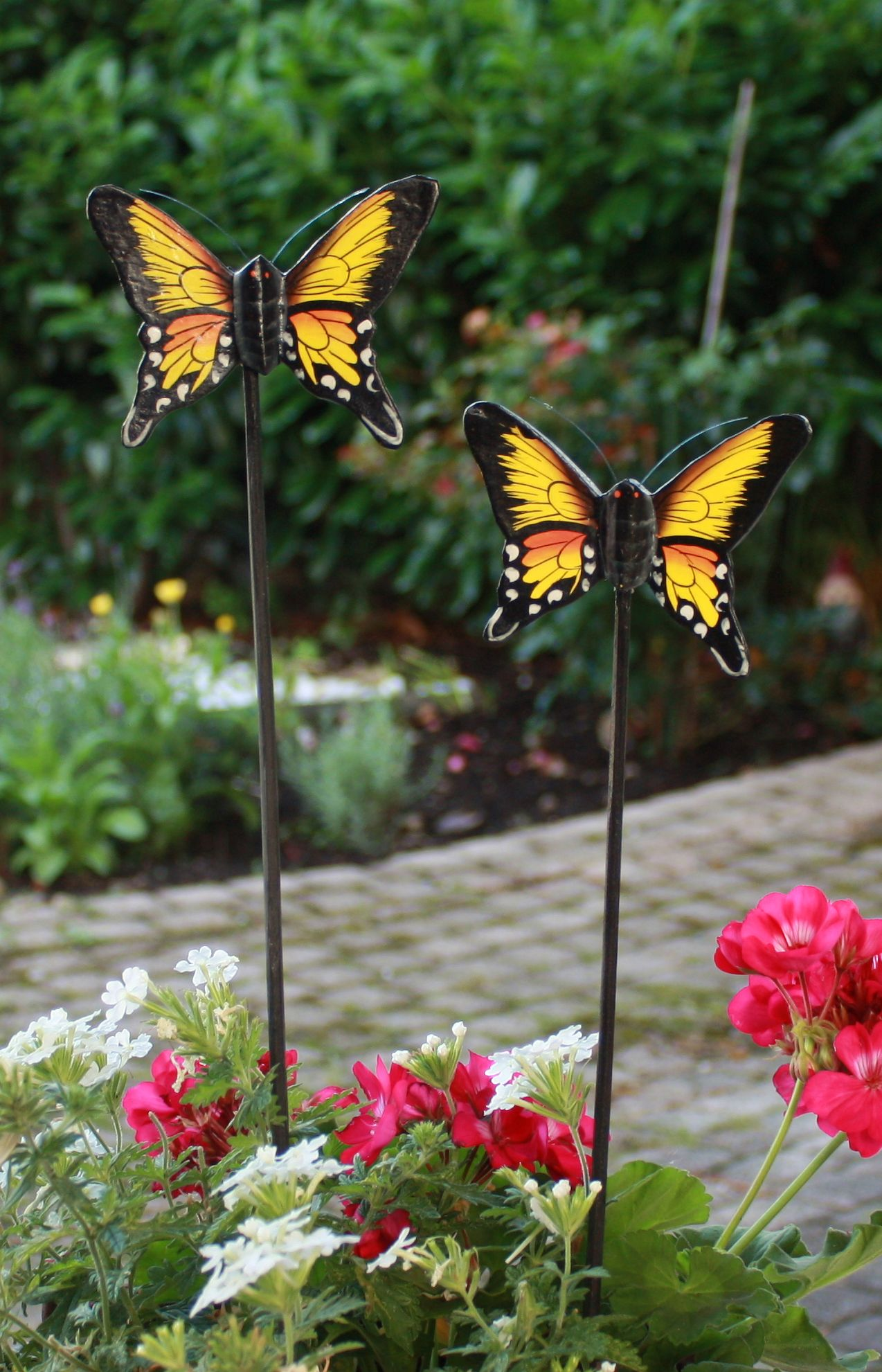 38 Bilder Mit Schmetterlingen